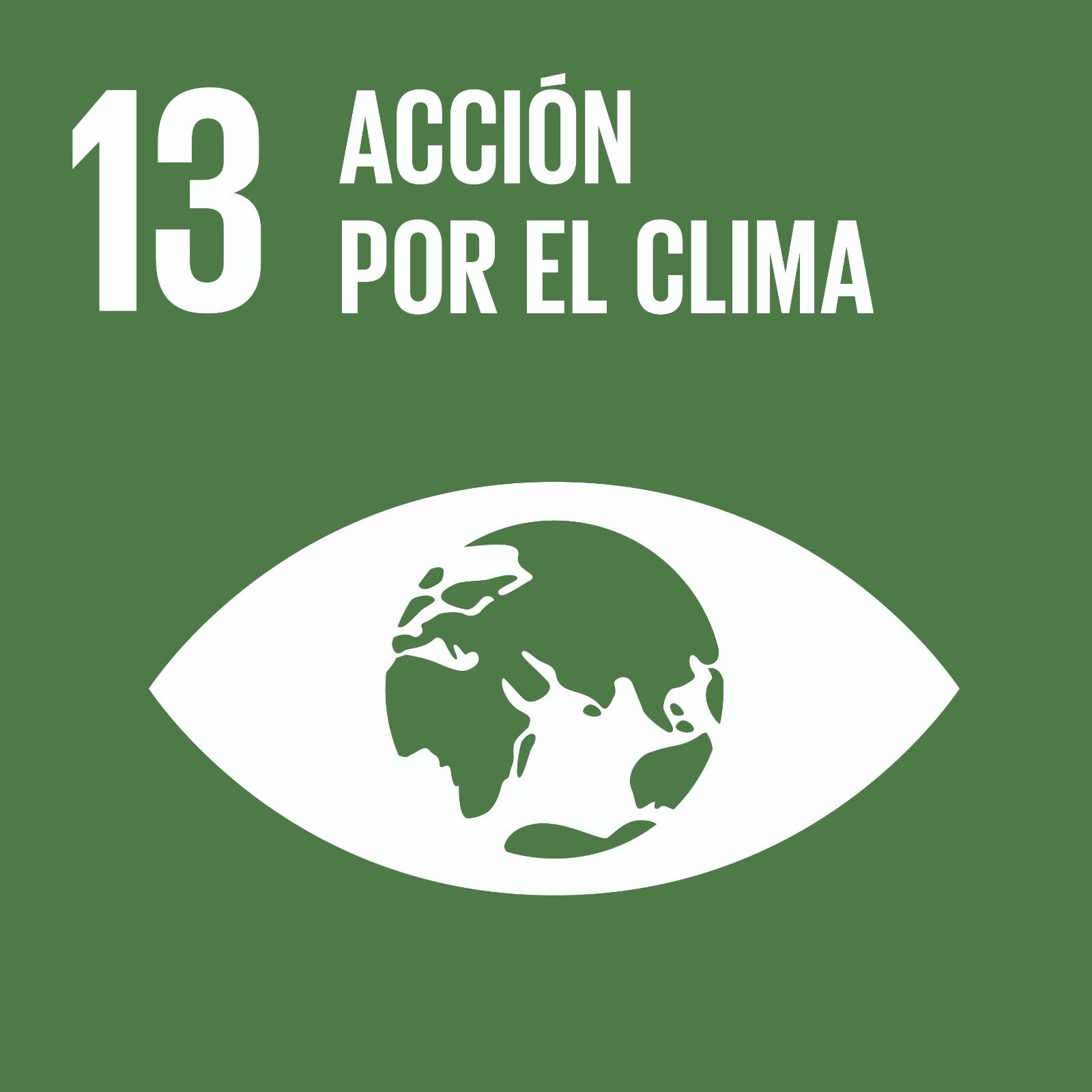 ODS 13 Acción por el Clima en el CEIP Rosario Pérez